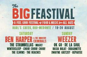 the-big-festival